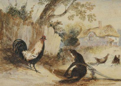 Newton FIELDING (1799 -1856) Une belette prise au piège face à un coq Aquarelle....