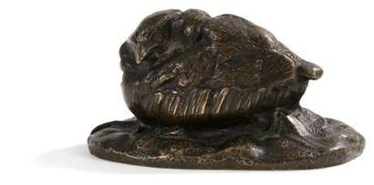 Oisillon couché Bronze à patine brune nuancée....