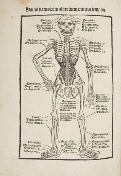 [HORTUS SANITATIS]. Ortus Sanitatis. De herbis & plantis. De Animalibus & reptilibus....