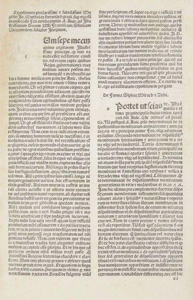 [AVICENNE] FERRARI DE GRADI (Giovanni Matteo)....