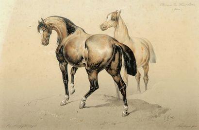 Victor Adam (1801-1886).