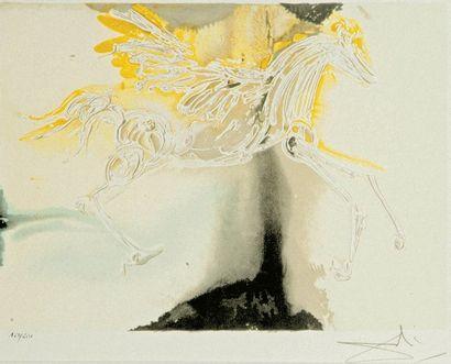 Salvador Dalí (d'après) (1904-1989).