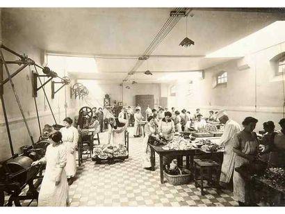 Conserverie. Vincennes, c. 1900. 11 tirages...