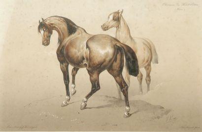 Victor ADAM (1801-1886)
