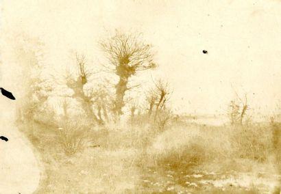 Auguste Bachelin (1830-1890)  Scène champêtre,...
