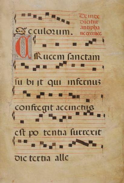 [MANUSCRIT]. Antiphonaire manuscrit. S.l.,...