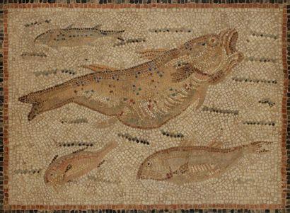 Mosaïque aux poissons Tunisie, époque romaine,...