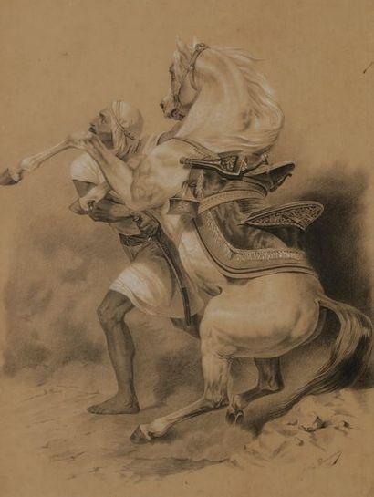ÉCOLE ORIENTALISTE Bédouin au cheval Crayon...