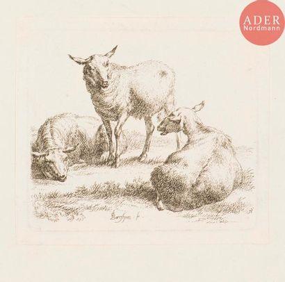 Sujets animaliers (bovins, chevaux, ovins, pourceaux). Eau-forte (une lithographie)...