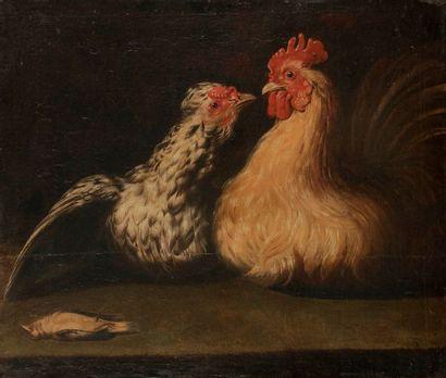 École HOLLANDAISE vers 1700 Poule et coq Toile 45 x 54 cm Restaurations ancienn...
