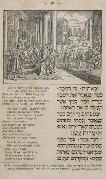 HAGADAH - Frei übersetzt in Reimen mit eingeschalteten...