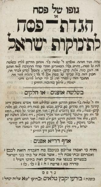 HAGADAH - Hagadat Pessah leTinokot Israël....