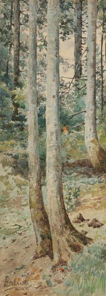 Augusto BALLERINI (1857-1902) Sous-bois,...