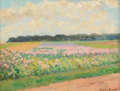 Georges BINET (1865-1949) Champ de fleurs...