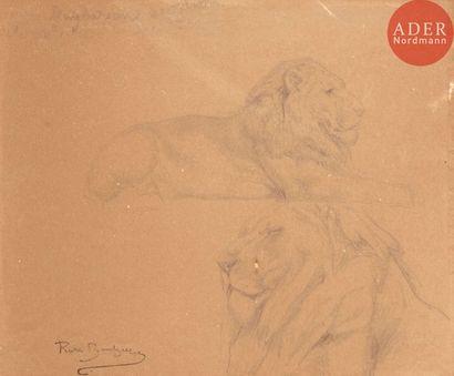 Rosa BONHEUR (1822-1899) Étude de lions Crayon...