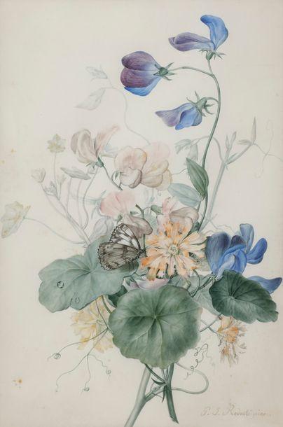 Pierre Joseph REDOUTE (1759-1840) Fleurs...