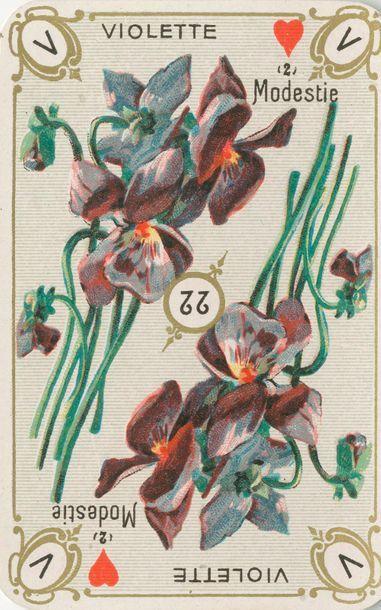 Le Language des fleurs : Bertrand & Renucci,...