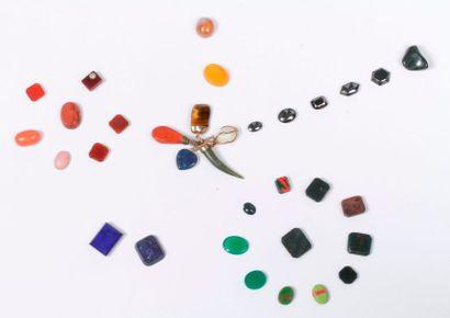 Lot de pierres sur papier : jaspe sanguin,...