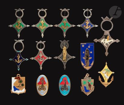 14 insignes Sahariens Troupes Coloniales...