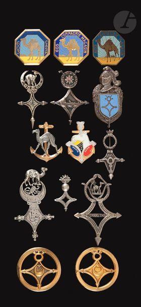 14 insignes «Saharien» Scorpion Ligne Mareth(couverture...