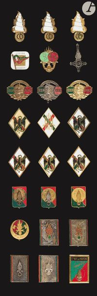 24 insignes - Légion Etrangère DCRE, DEVE,...