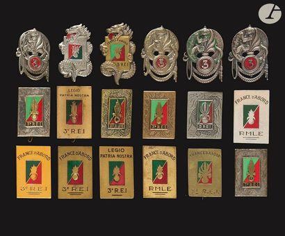 18 insignes - RMLE et 4x Salamandre (Dr Ber...