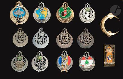 14 insignes - 1er RTA AFN 1942, Drago Ber, OFSI, locale EO et 1er Rt Béret, 7 O...