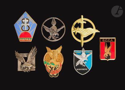 7 insignes - Commandos de chasse dont Cdos...