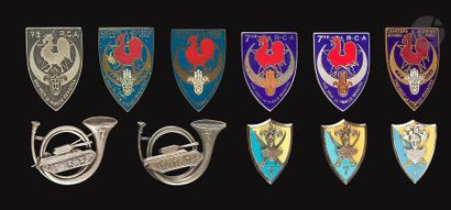 11 insignes du 7e RCA - 2x Graziani (avec...
