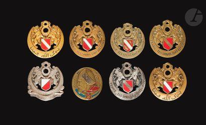 5 insignes du 6e RSA – 2x Dr Ber (bleu clair...