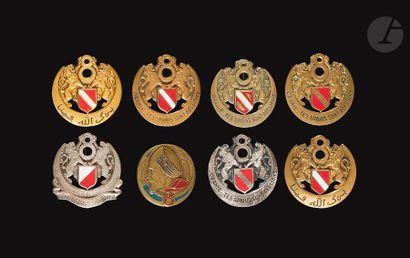 8 insignes - 7x 8e RSA (1er Modèle Dr Ber,...