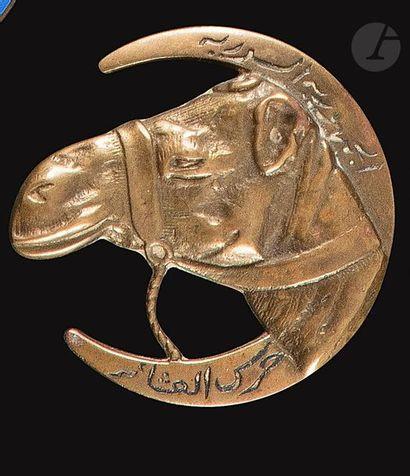 Insigne du Peloton Méhariste Druze (artisanale...