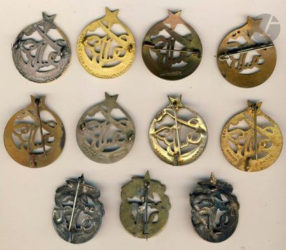 11 insignes du 3e RTA - 8 variantes (une en argent D.P) et 3x BM (locale, argent...