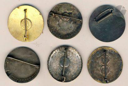 6 insignes variantes du 5e RTA - Chobillon, Dr Ber (argent), Dr Ber, Locale d'Indochine,...