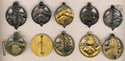 10 insignes variantes 6e RTA - Dr Ber, 3x DP [1 Attache cassée], Dom en argent,...