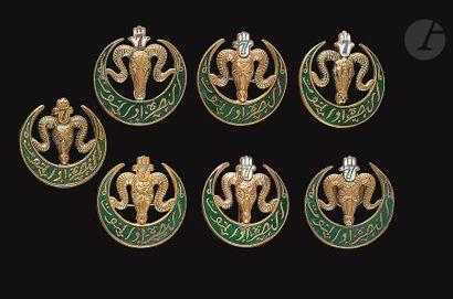 7 insignes variantes du 2e modèle du 7e RTA...