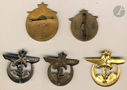 5 insignes 9e RTA - 2x 1er modèle Chobillon, Dr Ber, 3x 2e modèle (2 Dr Ber et un...