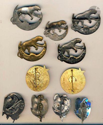 12 insignes – 5x 15e RTA grand et petit modèle ([ANC] sur les 2 grands, 3x 15e BTA...