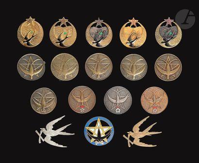 17 insignes du 1er RTM dont 2x Mourgeon 1er...