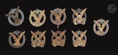 9 insignes du 3e RTM dont 2x en argent, 2...