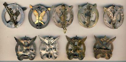 9 insignes du 3e RTM dont 2x en argent, 2 locales et 2 [SA].
