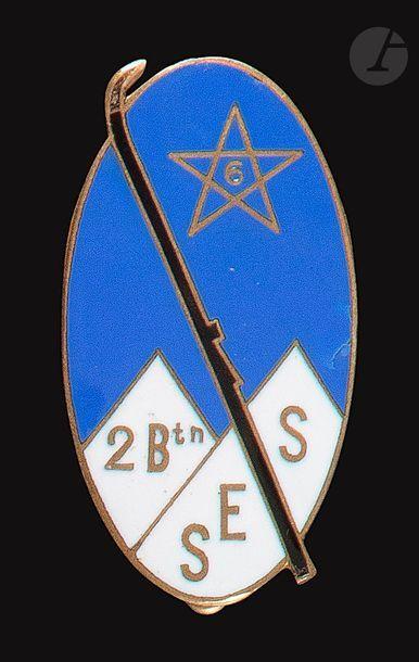 SES 2e Bn 6e RTM skis ovale ciel bleu Abpd....