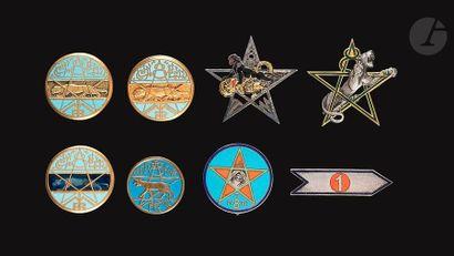8 insignes du 8e RTM dont Abpd, locale d'Italie,...