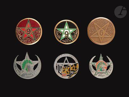 Insigne du 59e BMTM du Levant, 6 insignes...