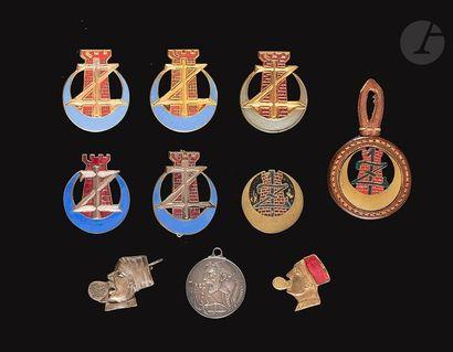 9 insignes et une médaille 1er Zouaves dont...