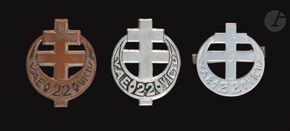 3 insignes variantes du 22e BMNA FFL - 2x...