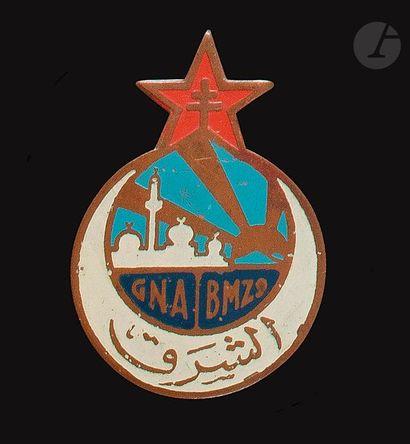 Insigne du GNA / BMZ 9 locale du levant.