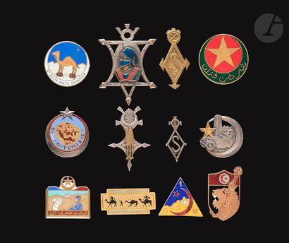 12 insignes Goums et Mahzens - H'Zegdou[SA],...