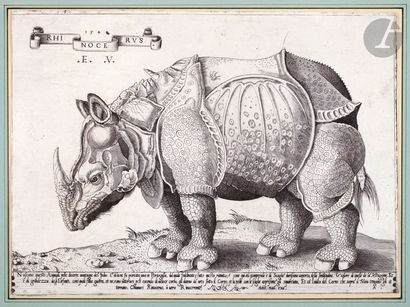 Enea Vico (1523-1567) Rhinocéros. 1548. Eau-forte...