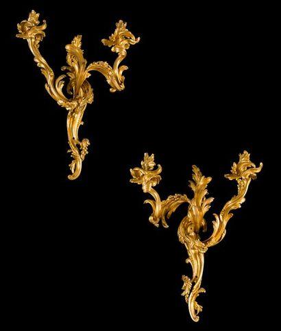 Paire de bras de lumière en bronze doré à...
